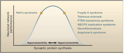 fragile x syndrome research paper Currently, nhgri is not conducting clinical research on fragile x syndrome however, studies are currently underway [clinicaltrialsgov].