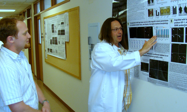 Bone marrow research paper