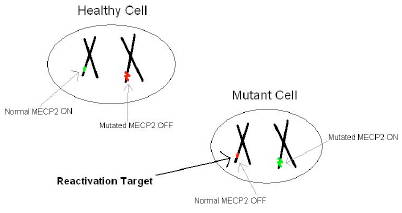 healthy-mutant